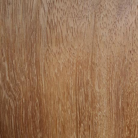 Iroko hardwood